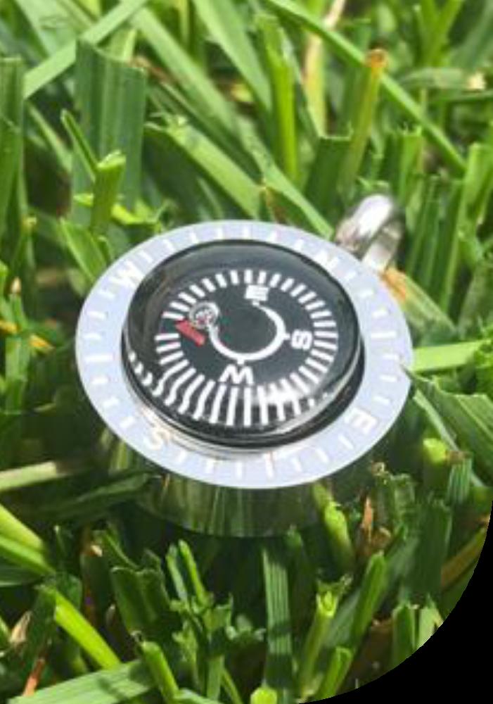 Kompass_grün